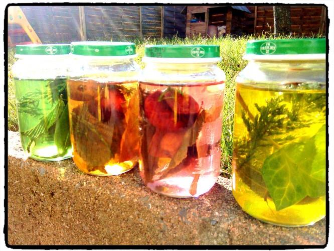 Des pots sensoriels aux couleurs de l'automne