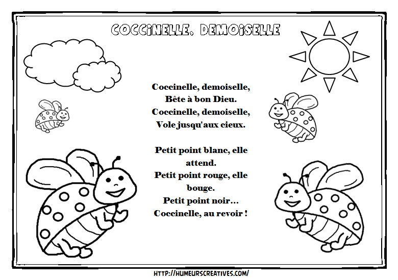 Illustration coccinelle demoiselle