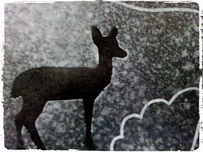 Les animaux sous la neige