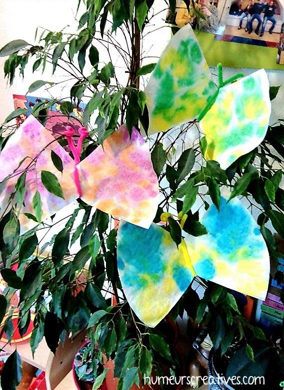 papillons suspendus dans les plantes