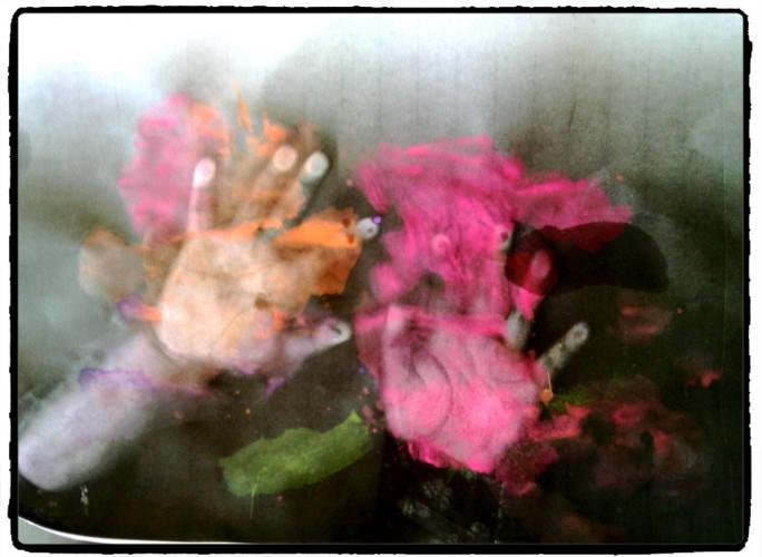 Mains photocopiées #2