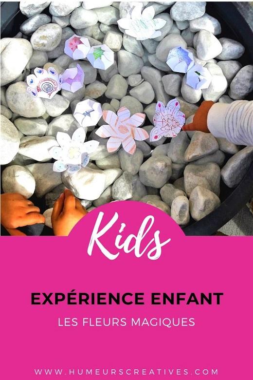 Expérience fleurs magiques à faire avec les enfants