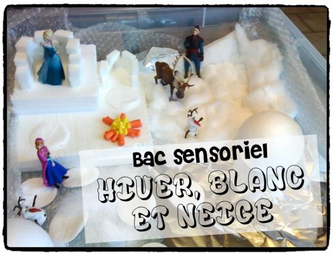 Bac sensoriel : l'hiver, le blanc, la neige