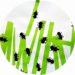 Bricolage pour enfant : fourmis en empreintes de doigts