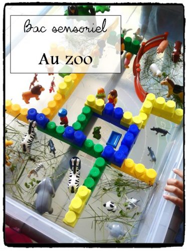 Bac sensoriel : le zoo