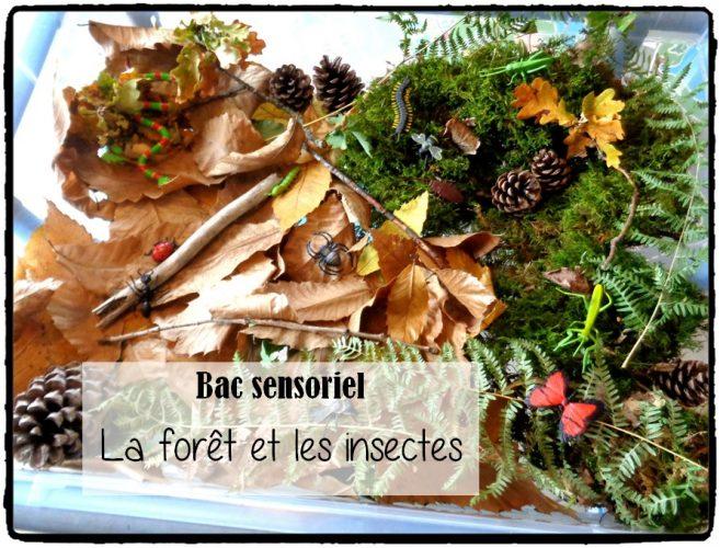 Bac sensoriel : la forêt et les insectes