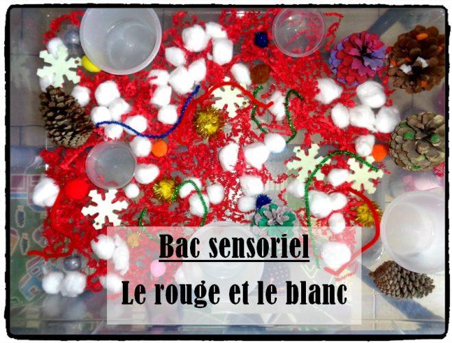 Bac sensoriel : le rouge et le blanc