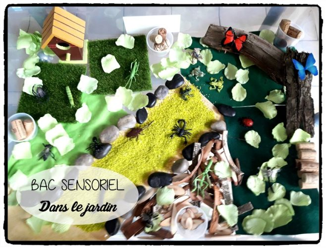 Bac sensoriel : dans le jardin