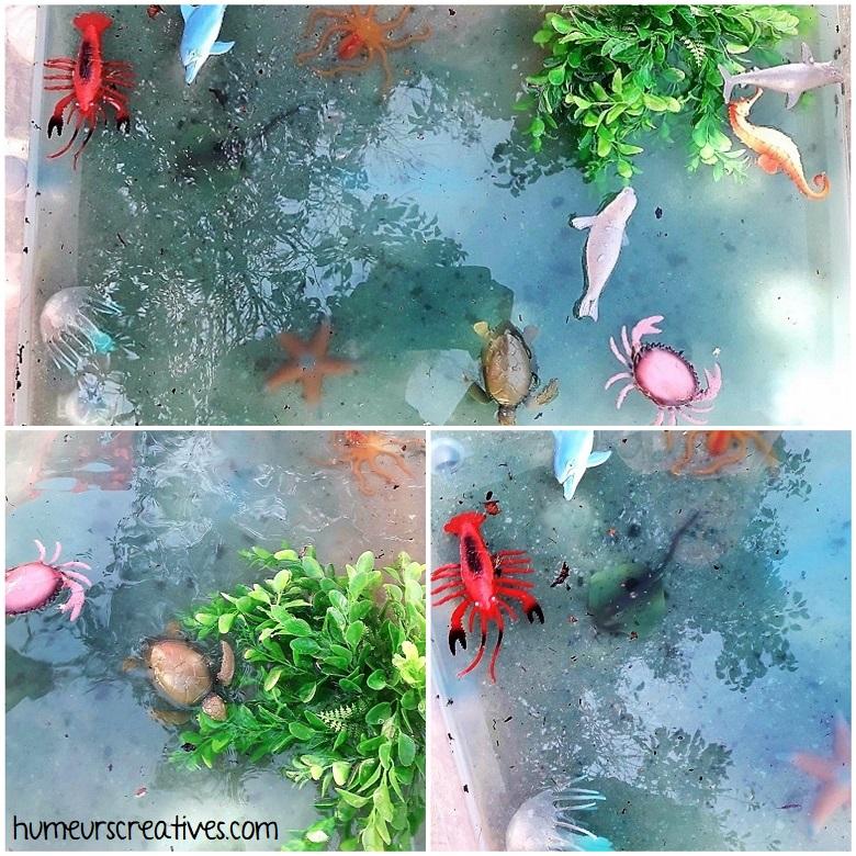 préparation du bac sensoriel sur l'océan avec les animaux marins