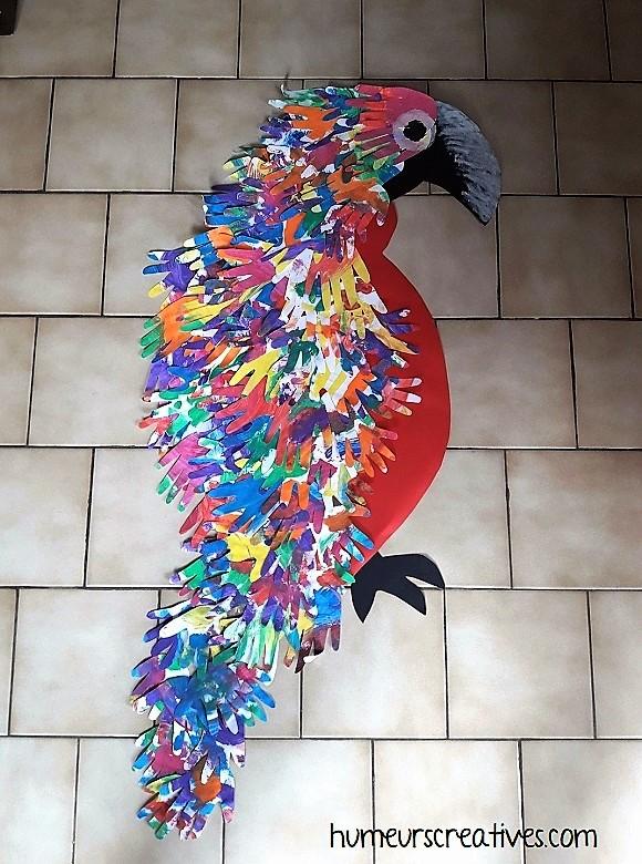 notre perroquet à plusieurs mains