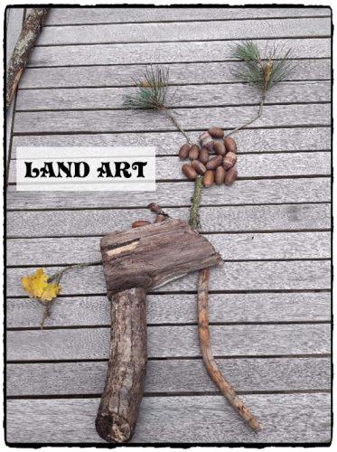 Land Art : créer des dessins