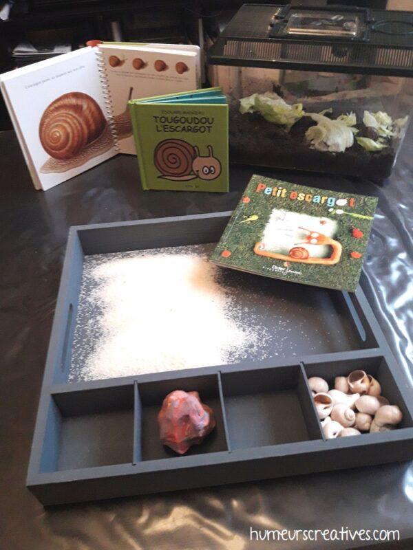 activités créatives pour enfants autour des escargots
