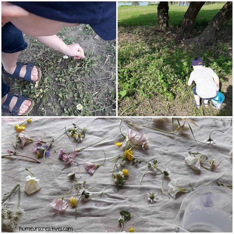 ramassage de fleurs avec les enfants