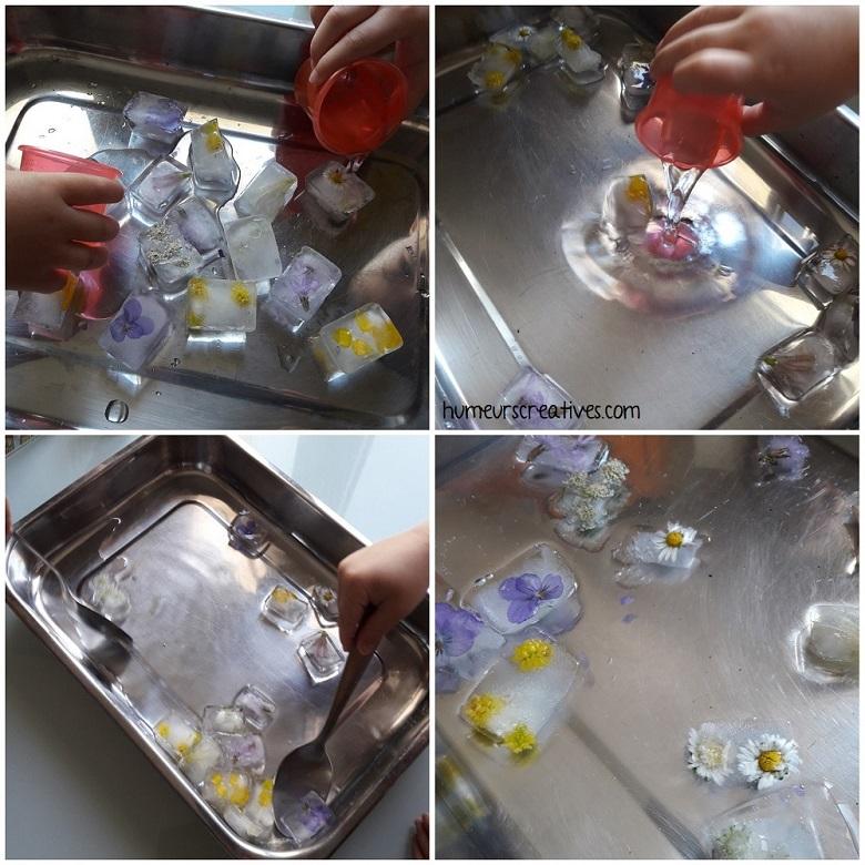 les enfants libèrent les fleurs des glaçons avec de l'eau
