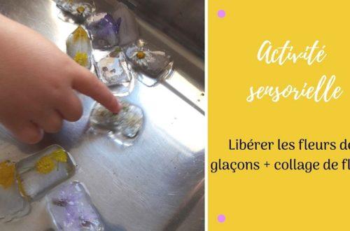 Activité sensorielle et créative pour enfants : libérer les fleurs des glaçons et collage de fleurs pour réaliser un tableau champêtre