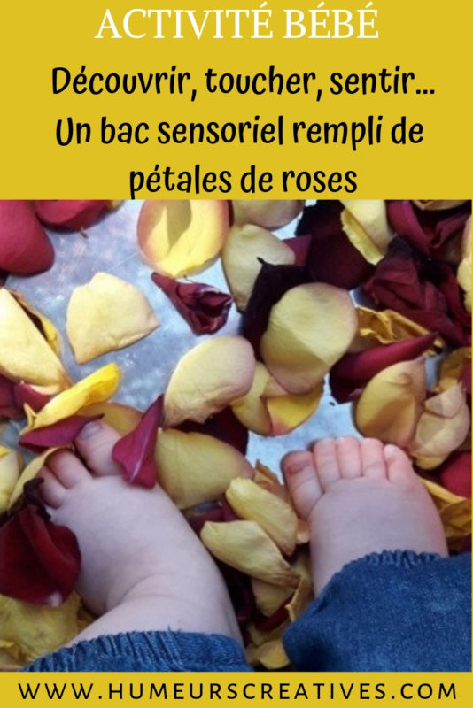 activité sensorielle pour enfants avec des pétales de rose