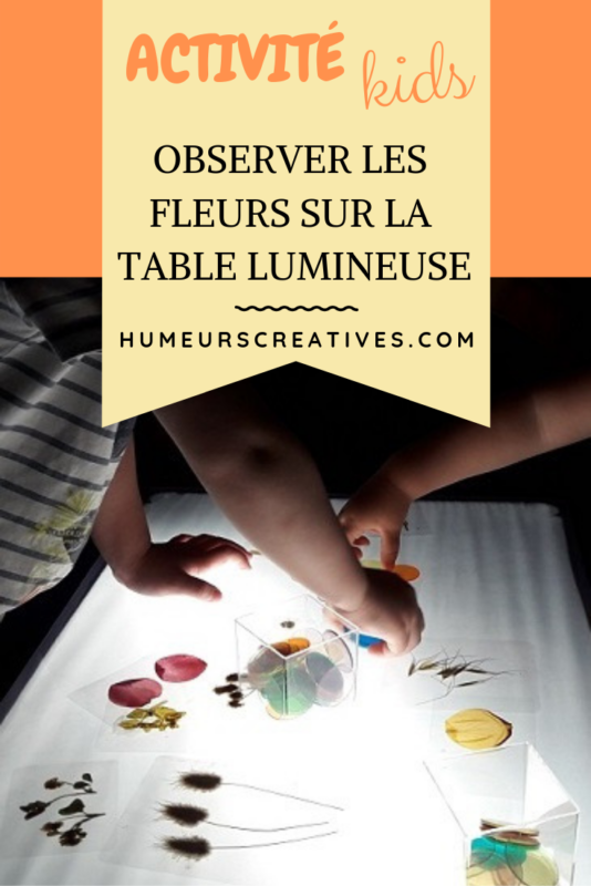 activité table lumineuse pour enfants : observer et jouer avec les fleurs