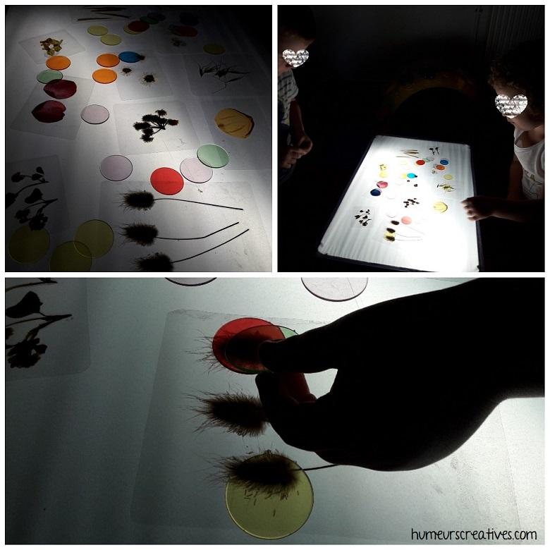 table lumineuse : les enfants observent les fleurs et jouent avec les jetons multicolores