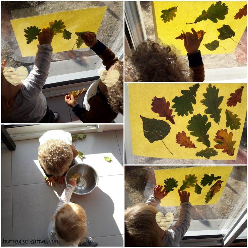 découverte et manipulation des feuilles d'automne + collage sur papier autocollant installé sur la fenêtre