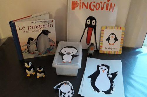 activités pour enfants autour du pingouin