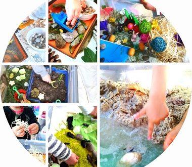 50 idées de bacs sensoriels pour les enfants