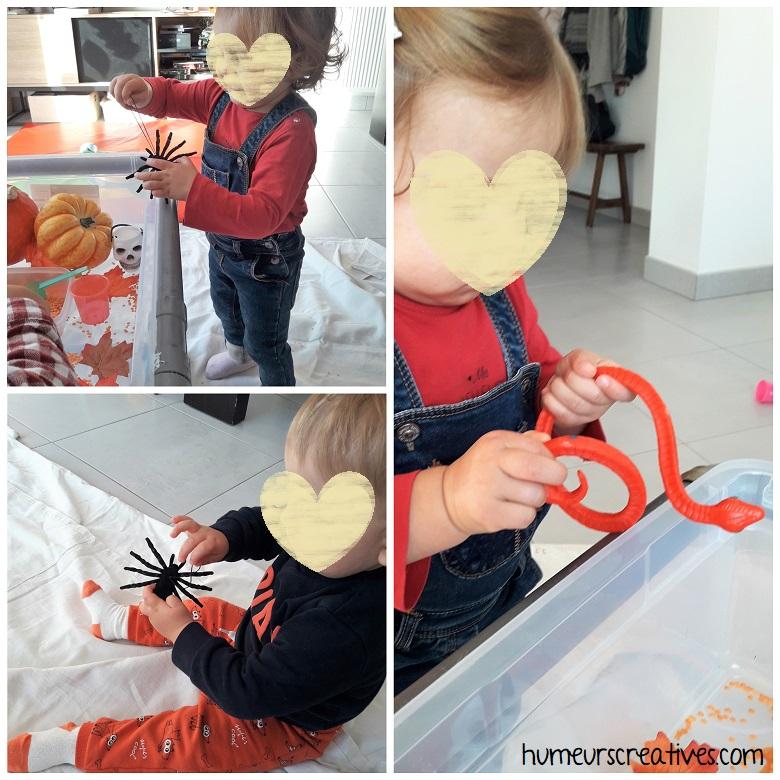bac sensoriel Halloween pour les enfants - découverte des araignées et serpents
