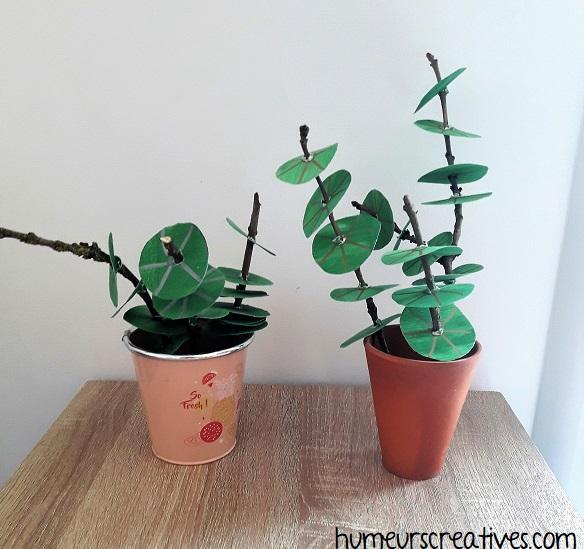 nos plantes vertes réalisées avec du carton