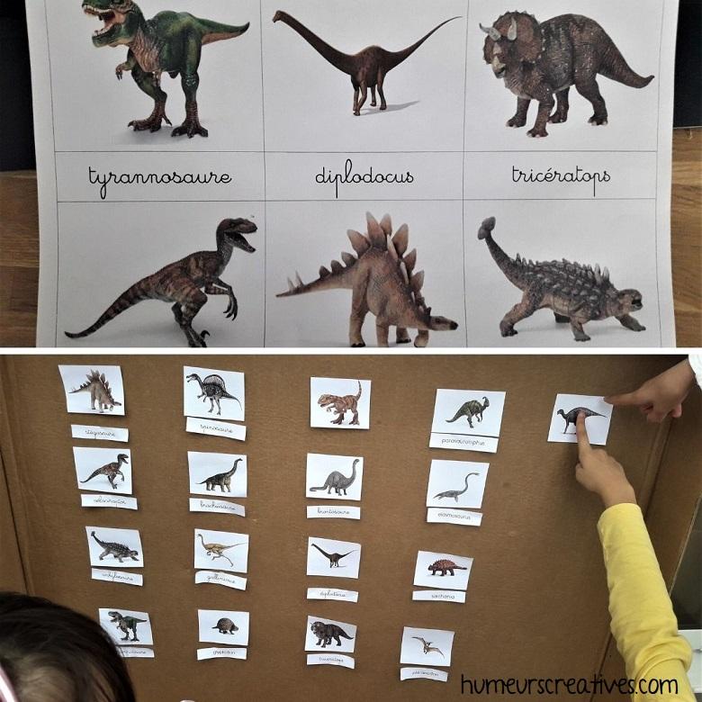 associer les noms des dinosaures à l'image
